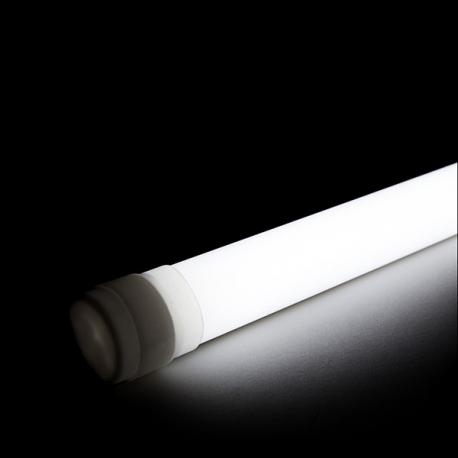 Tubo LED IP65 Productos Lácteos 600Mm 9W 50.000H - Imagen 1